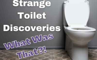 Strange Toilet Discoveries